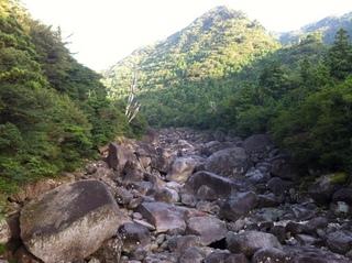 屋久島3.jpg