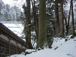 永平寺3.JPG