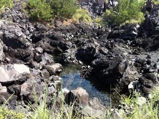 溶岩なぎさ遊歩道3.jpg
